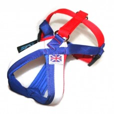 Hooner hybrid pro GB harness