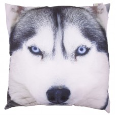 Husky-Wolf Print Cushion