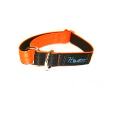 Hooner Team Collar